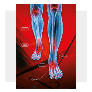 Dola Posters_skeleton